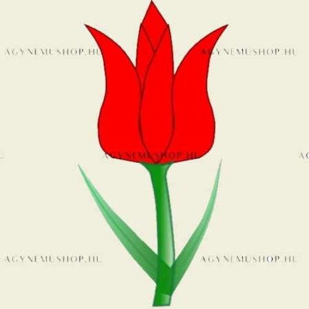 Tulipán ovis jel